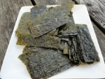 seaweed-is-not-just-for-sushi-by-carina-sohaili
